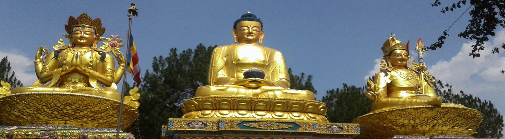 Statue of Buddha's