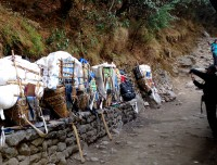 Local baskets with trekking goods