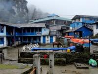Tadapani Annapurna Region