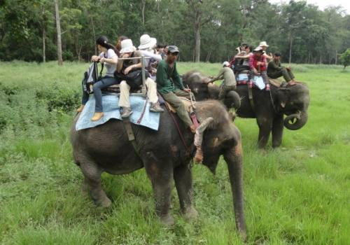 Chitwan Wildlife Safari Tour